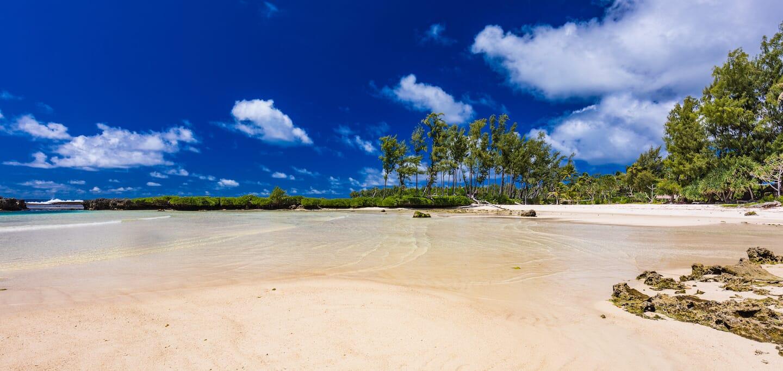 Passeport du Vanuatu